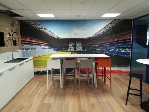 Toil-murale-acoustique-imprime-stade-Olympique-Lyonnais