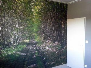 Toile murale imprime